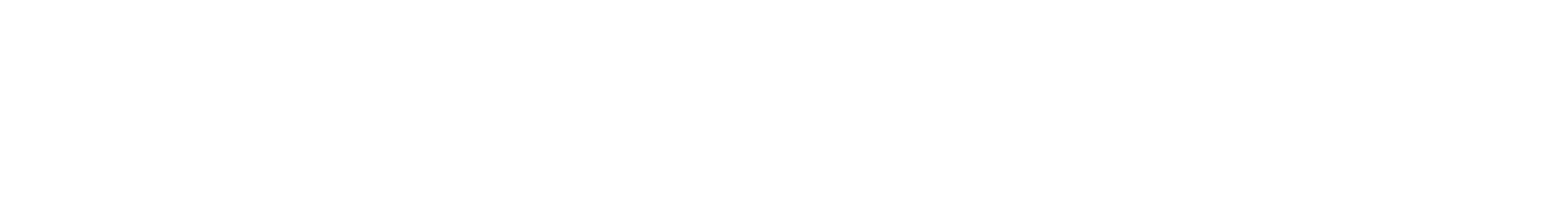Sirius Group AG Logo Text